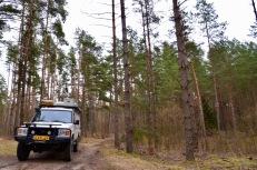 """Door de bospaden in het nationaal park """" Dzukijos"""""""