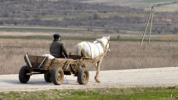 Ook in Moldavie veel 1PK transport