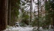 Witte wereld in de bossen bij het Rila klooster.